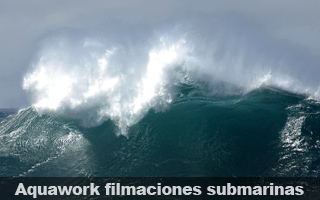 Aquawork filmaciones submarinas